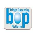 BOP pin